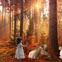 freetoedit fantasy forest autumn children