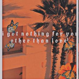 orange flowers pantone butterfly aesthetic freetoedit