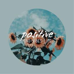 freetoedit aestheticcircle aesthetic sunflower saying