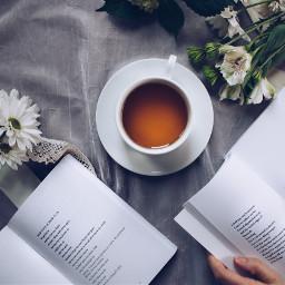 book tea autumn flatlay freetoedit