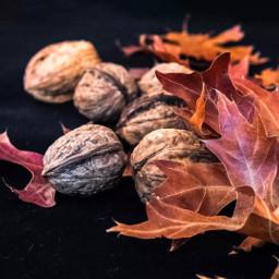 pcleaves leaves