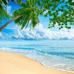 backgroundsticker background beach