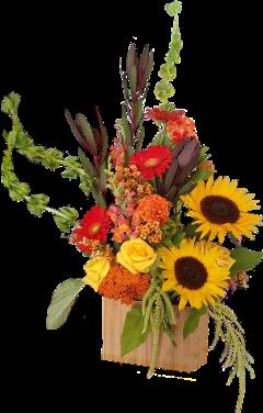 flowers sweetheart surprise love fall freetoedit