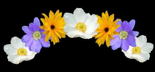 flores flowers enfeite tiara diadema freetoedit