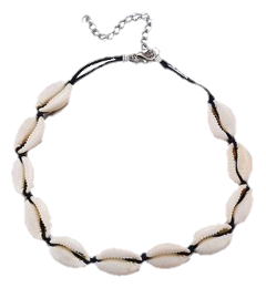 shellnecklace shell necklace vsco vscogirl freetoedit
