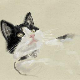 mycat portrait my colorpaint