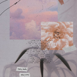 freetoedit aesthetic beige collage edit