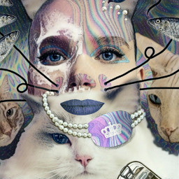 freetoedit patches woman cats whiskers