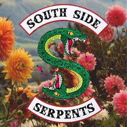 southsideserpents riverdale cherylblossom bettycooper jugheadjones freetoedit