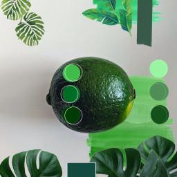 green pallette pantone collage freetoedit