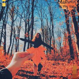 freetoedit autumn autum october girl