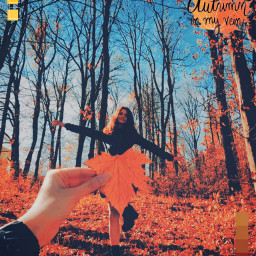 freetoedit autumn autum october girl