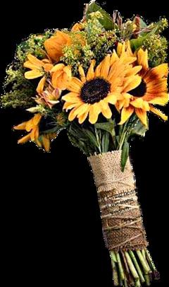 freetoedit bouquet sunflowers flowers burlap