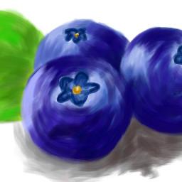 blaubeeren@verenaweber2 dcmyfavfruit myfavfruit blaubeeren