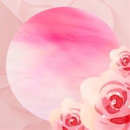 editbackground flowerbackground pinkbackground rosebackground pinkroses freetoedit
