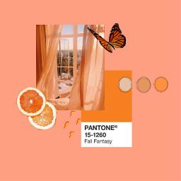 freetoedit orange aesthetic collage pallete