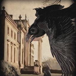 freetoedit crow castle woman classic