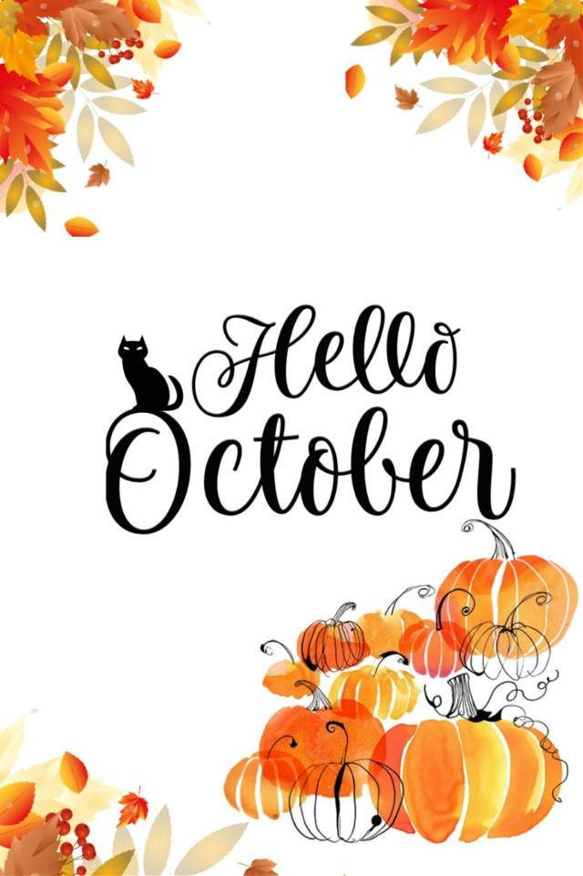 INSTAGRAM: @margo34277 YOUTUBE CHANNEL: Margo Picsart  #freetoedit #october #octubre #cat #blackcat #halloween #calabazas #hojas #otoño #eyes #orange #hello #word #letters #autumn
