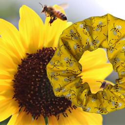 freetoedit scrunchie yellow bee vsco