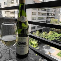 portugalwines winelovers winelover wsetglobal wsetlevel2