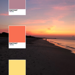 sunset color pantone beach colorful freetoedit