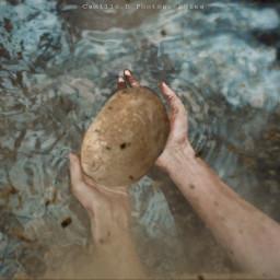 irchands hands freetoedit potatoes dirt