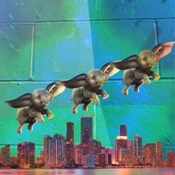 freetoedit dumbo elephant city water eccanvastexture