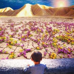 freetoedit littleboy life bloom growth