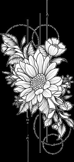 flowers aesthetic black outline white freetoedit