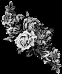 freetoedit roses black white flowers