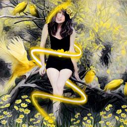freetoedit black yellow birds flowers