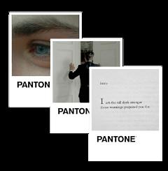 freetoedit aesthetic pantone suit eyes