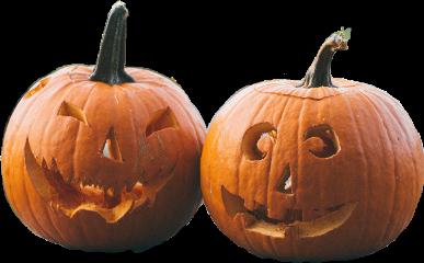 calabaza halloween diademuertos hallowen orangestickers stickersfreetoedit freetoedit