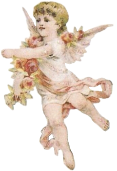 cherub vintage ribbons lace wings freetoedit
