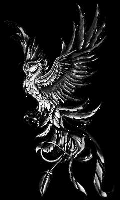 tatoo falcon falke eagle freetoedit