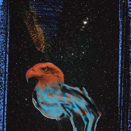 freetoedit eagle eaglez eaglemoss eagles