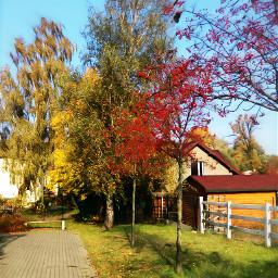 naturephotography autumn autumncolors autumnvibes october2019