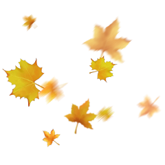 ftestickers leaf fall leaves stickers freetoedit
