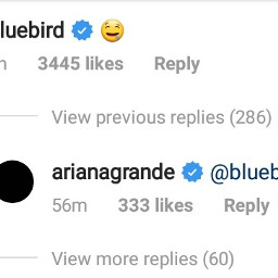 arianagrande mikey mikiana bluebird boyfriend