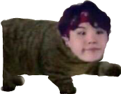 suga cat memes yoon yoongi freetoedit