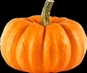 тыква freetoedit scpumpkins pumpkins