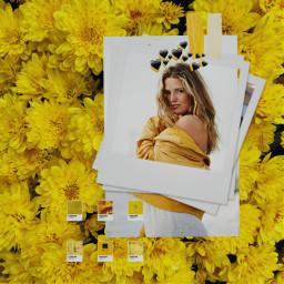 freetoedit amarillo yellow black