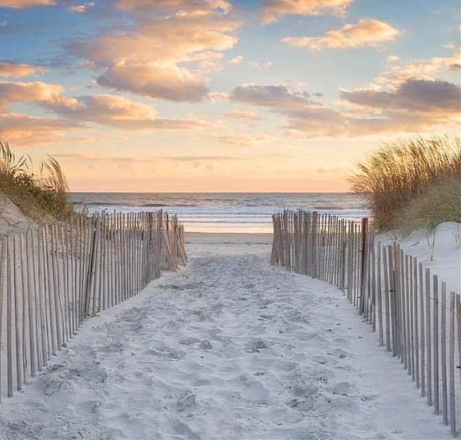 #morningwalk #goldenhour #sunrise #pathway to #thebeach #woodfences to #protectthedunes #vanishingpoint #beachlover #seaview #horizon #skyandclouds #goldenlight #morninglight #sunriselight #nature #beachphotography  #freetoedit