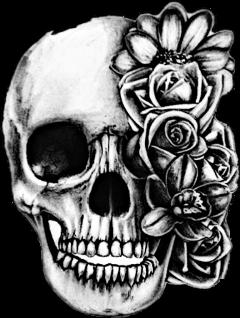 freetoedit scskulls skulls