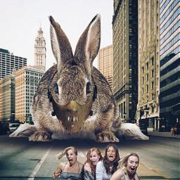 rabbit giantanimals mask hannibal girls scream freetoedit