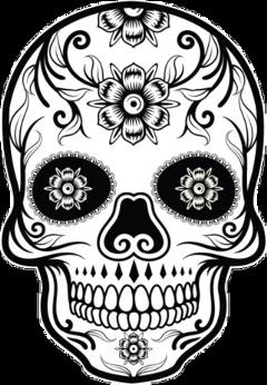 adesivo teschio halloween freetoedit scskulls skulls
