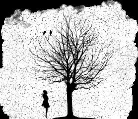 freetoedit sctreesilhouette treesilhouette