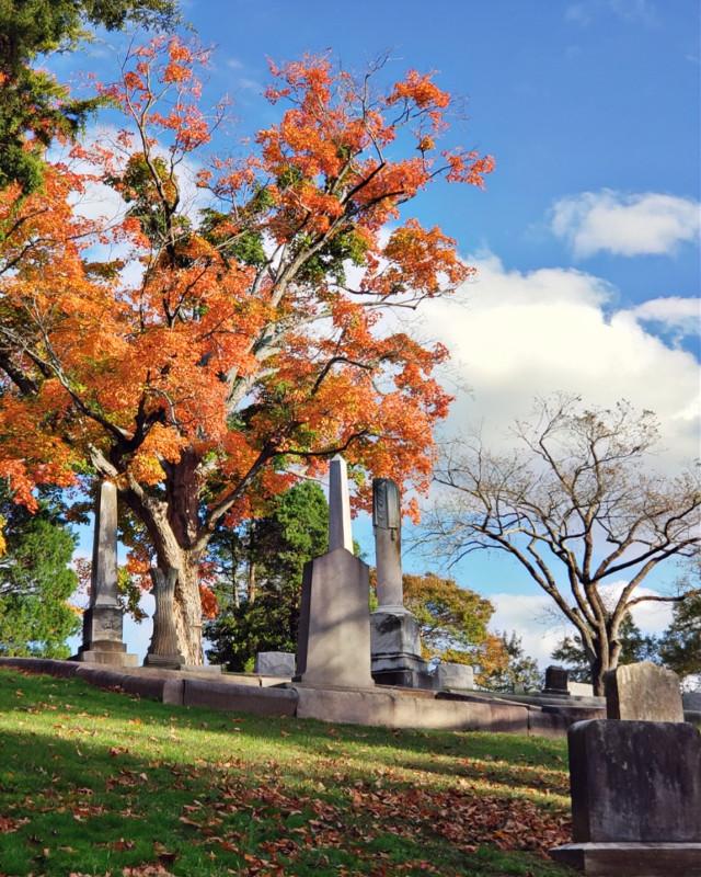 #HollywoodCemetery #RichmondVa #autumn #colorful #cemetery #myphoto #gloriouscolors