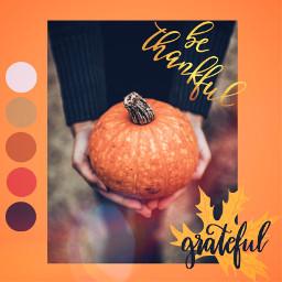 unsplash thanksgiving freetoedit