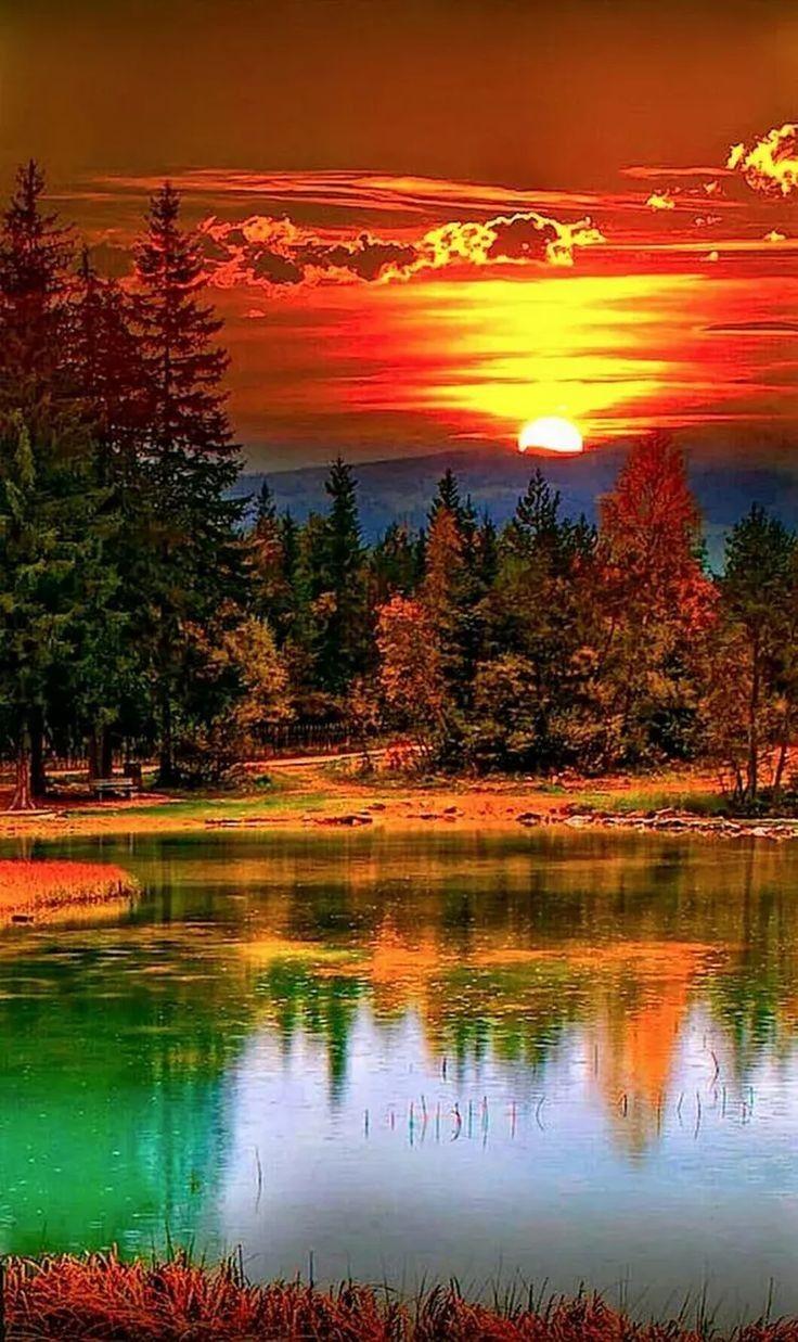 #freetoedit #sunshine #sunset #photography